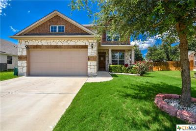 Killeen Single Family Home For Sale: 3713 Rusack Drive