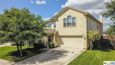 Comal County Single Family Home For Sale: 156 Crane Crest Drive