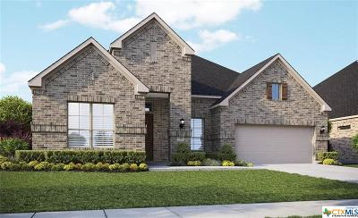 New Braunfels Single Family Home For Sale: 1382 Village Inn