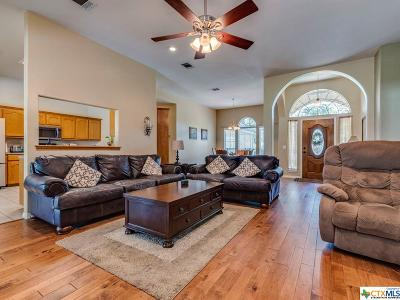 Hays County Single Family Home For Sale: 2904 Mountain High Drive