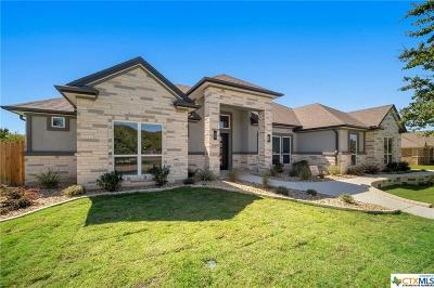 Belton Single Family Home For Sale: 12033 Lago Terra