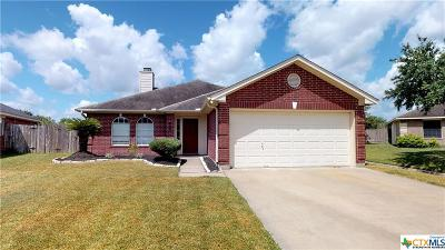 Single Family Home For Sale: 409 Deer Chase