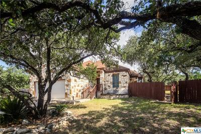 Hays County Single Family Home For Sale: 4 Bullseye Circle