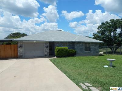 Bell County Single Family Home For Sale: 555 Lakeview Drive