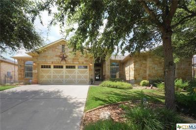 New Braunfels Single Family Home For Sale: 860 San Ignacio