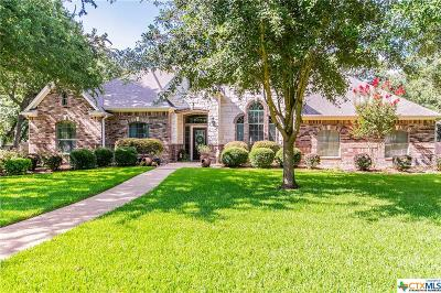 Belton TX Single Family Home For Sale: $388,500