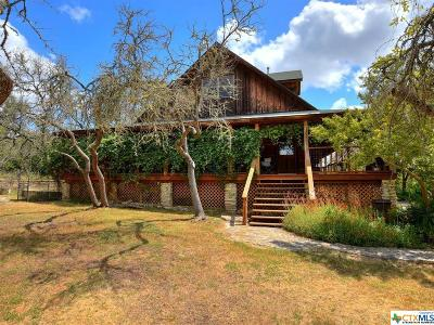 Hays County Single Family Home For Sale: 3607 Lone Man Mountain Road