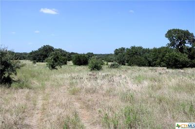 Salado Residential Lots & Land For Sale: Shiny Top Ranch Lane