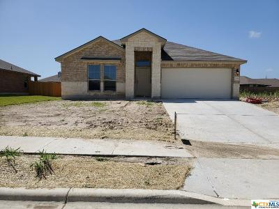 Killeen Single Family Home For Sale: 204 Danielle Drive