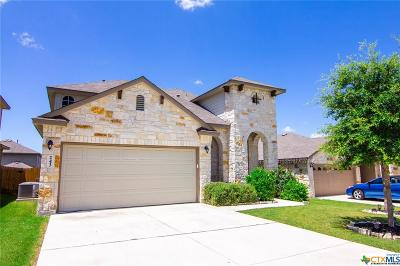 Comal County Single Family Home For Sale: 243 Oak Creek Way