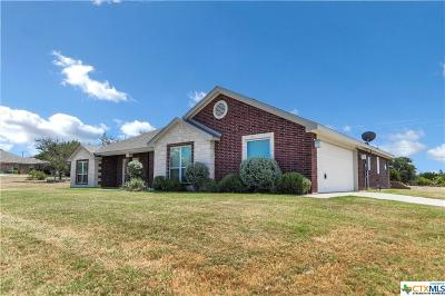 Kempner  Single Family Home For Sale: 140 County Road 4772