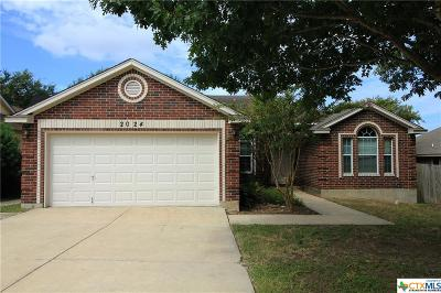 New Braunfels Single Family Home For Sale: 2024 Sungate Drive