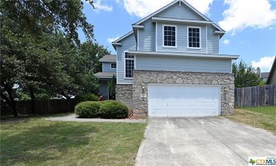 San Antonio Single Family Home For Sale: 103 Willow Grove Drive