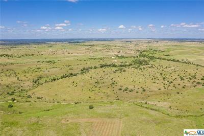 Bell County, Burnet County, Coryell County, Lampasas County, Llano County, McLennan County, Mills County, San Saba County, Williamson County Residential Lots & Land For Sale: 2685 County Road 212