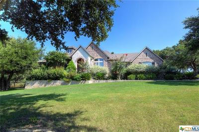 Comal County Single Family Home For Sale: 135 River Star Drive
