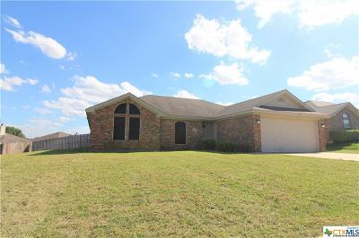 Killeen Single Family Home For Sale: 3804 Tiger Drive