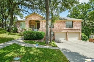 Belton Single Family Home For Sale: 3052 Summit Drive