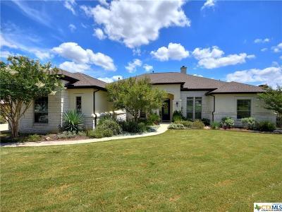 Georgetown Single Family Home For Sale: 148 Joshua Drive
