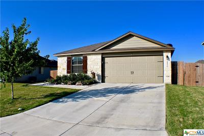 New Braunfels Single Family Home For Sale: 2526 Diamondback Trail