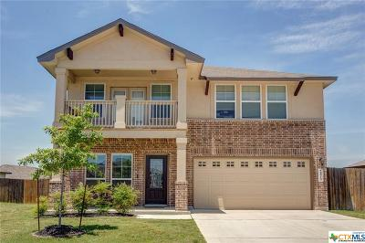 Comal County Single Family Home For Sale: 2819 Sanderling Way