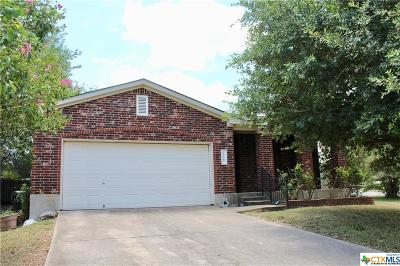 Kyle Single Family Home For Sale: 237 Western Drive