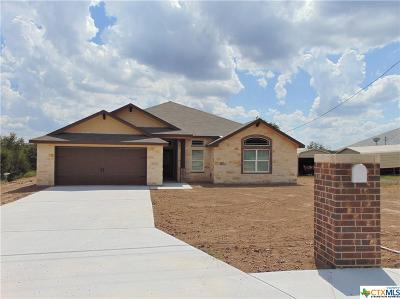 Kempner Single Family Home For Sale: 4033 Wells Drive