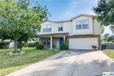 New Braunfels Single Family Home For Sale: 689 Northgap Drive