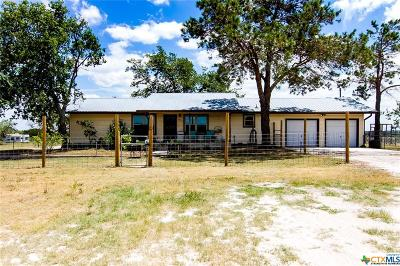 Lampasas  Single Family Home For Sale: 8358 N Us Highway 281