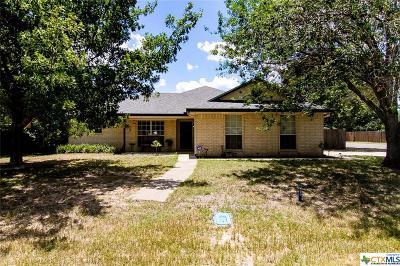 Gatesville Single Family Home For Sale: 230 Hamilton Drive