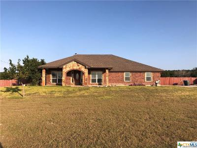 Copperas Cove Single Family Home For Sale: 2424 Big Divide Road