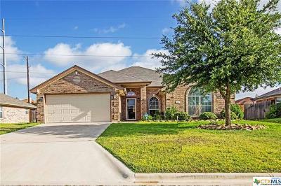 Single Family Home For Sale: 414 Canoe Drive