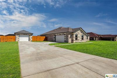 Salado Single Family Home For Sale: 4332 Green Creek Drive