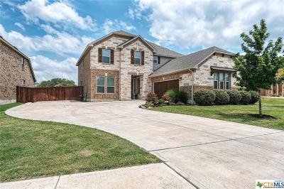 Leander Single Family Home For Sale: 1616 Carmine Drive