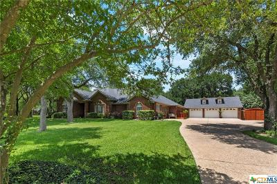 Belton Single Family Home For Sale: 517 Riverwood Drive