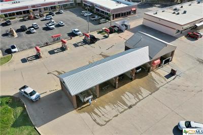 Belton Commercial For Sale: 519 Lake Road