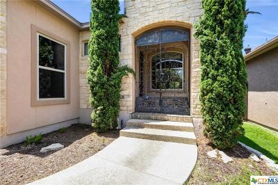 New Braunfels Single Family Home For Sale: 1200 Legacy Drive