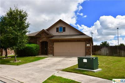 Cibolo Single Family Home For Sale: 364 Buckboard Lane