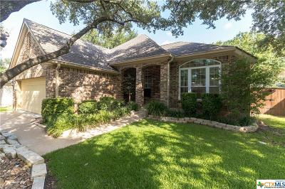 Georgetown Single Family Home For Sale: 113 Parque Vista Drive