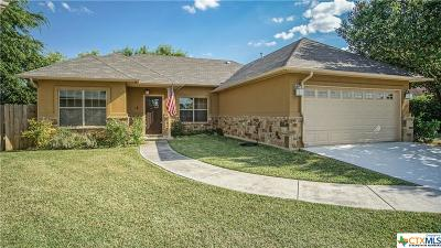 Single Family Home For Sale: 46 Sable Circle