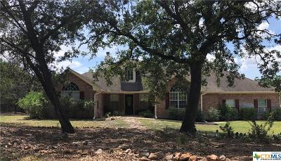 Salado Single Family Home For Sale: 7430 N Lakeview Drive