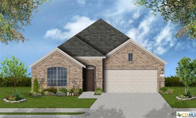 Cibolo Single Family Home For Sale: 833 Silver Fox Drive