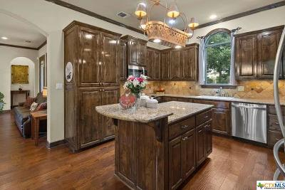 Boerne Single Family Home For Sale: 307 Park Ridge