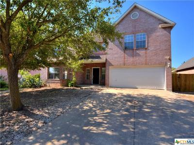 Pflugerville Single Family Home For Sale: 1221 Faber Drive