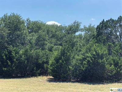 Williamson County Residential Lots & Land For Sale: 408 Ridge View Drive
