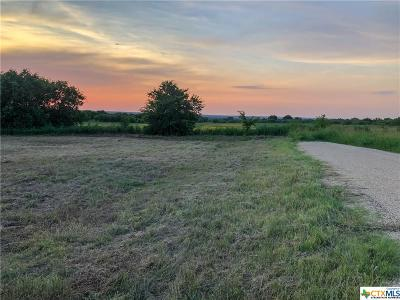 Williamson County Residential Lots & Land For Sale: 407 E Avenue A