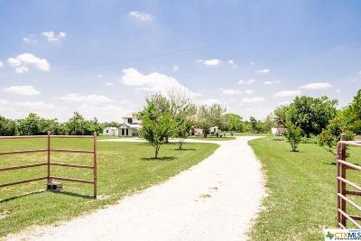 Belton Single Family Home For Sale: 4191 Sparta Road
