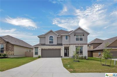 New Braunfels Single Family Home For Sale: 3595 High Cloud Drive