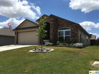 Seguin Single Family Home For Sale: 1533 Redbridge Drive