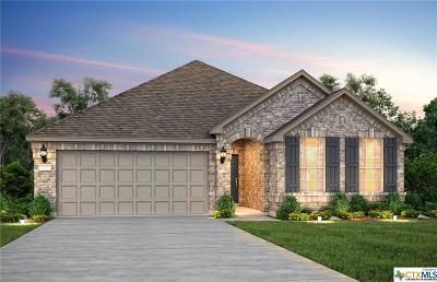 New Braunfels Single Family Home For Sale: 2189 Kiskadee Drive