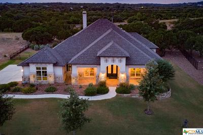 New Braunfels Single Family Home For Sale: 2330 Haven Bluff Court